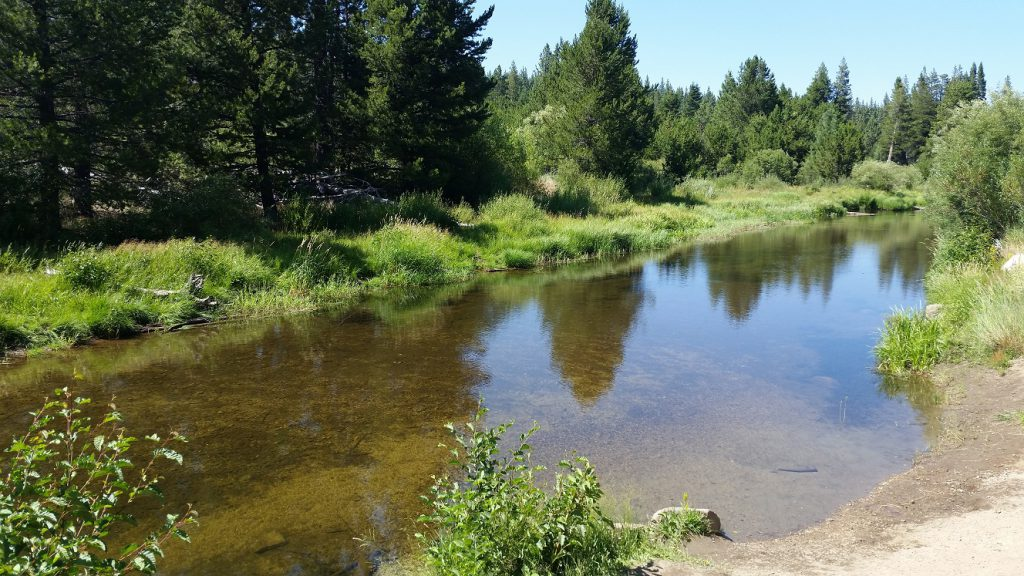 Upper Truckee River Tributary - South Lake Tahoe Parks