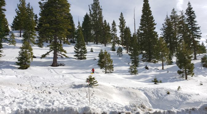 The Best Family Sledding in South Lake Tahoe is FREE!